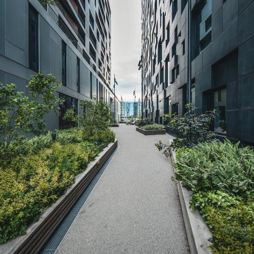 Traseen mellom en av bygningen i Barcode. Høye bygninger på hver side og grønne planter langs bygningene.
